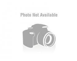 Guernica 2.0