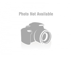 Outline fish caos